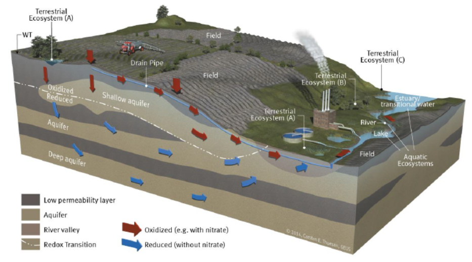 Ground-water Dependent Ecosystem e Normativa Europea